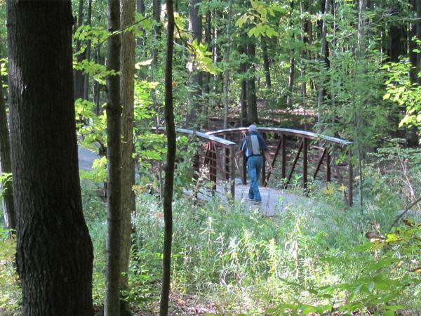 Bronte Creek Phase 2 Valley Naturalization bridge