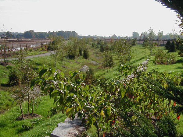 Bronte Creek Phase 2 Valley Naturalization overview 3